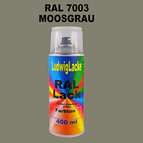 RAL 7003 Moosgrau Seidenmatt 400 ml 1K Spray