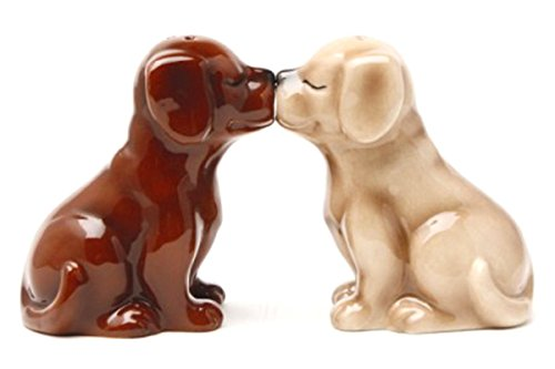 Pacific Giftware Labrador Puppies Magnetic Salt and Pepper Shakers Set, Blond/Chocolate