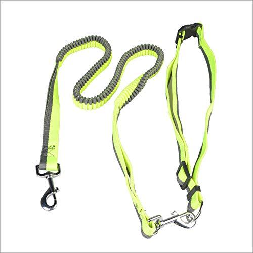 Klassische Hundeleinen Leuchtender Laufpuffer Aus Nylon Zuggurt Haustierleine Gürtel Gurt Haustier Hund Zugtraining Seil