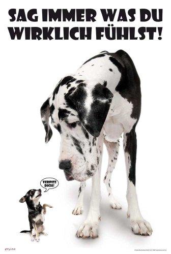 Hunde - Sag Immer was du fühlst - Tier-Poster schwarz-Weiss Foto - Grösse cm