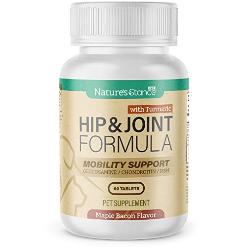 Nature s Stance Hip & Joint Supplement for Dogs & Cats - Supports Mobility & Joint Health for Dogs & Cats   Includes Turmeric  Glucosamine  Chondroitin  & MSM  60 Tablets