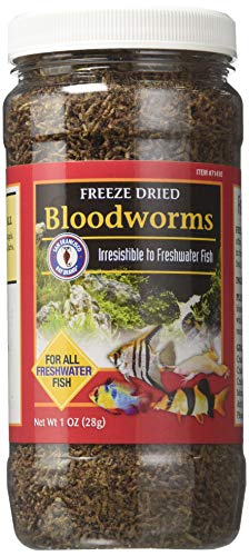 Top Pick: Best Freeze Dried Food for Betta