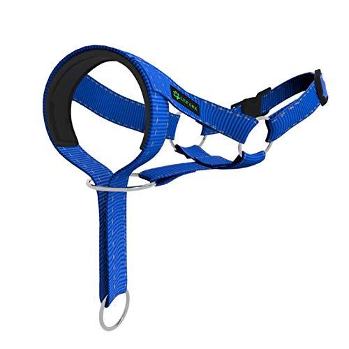 ILEPARK Hundehalfter fürs Training - buntes Kopfgeschirr für Hunde, um das Ziehen zu stoppen - verstellbares und leicht zu bedienender Kopfhalfter (S,Blau)