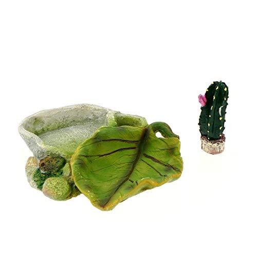 Balacoo Reptilien Nahrung Gericht Terrarium Wasserschale Kaktus Pflanze Figuren Lebensraum Dekor Reptilien Tank Ornament Terrarien Tierbedarf für Klettern Eidechsen Gecko Schlangen Grün