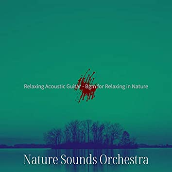 Relaxing Acoustic Guitar - Bgm for Relaxing in Nature