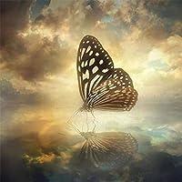 ナンバーキットによる5Dフルドリルダイヤモンドペインティング、子供、大人、お祭りの挨拶ギフト用のラインストーン刺繡クロスステッチキット-空の蝶-40x40cm