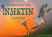 Oberbayerischer Insekten Kalender (Wandkalender 2022 DIN A4 quer): Wie sechsbeinige Zweifluegler die Fantasie befluegeln (Monatskalender, 14 Seiten )
