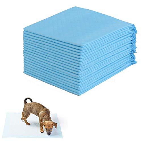 Pañales para perros de mascotas Gato súper absorbente Entrenamiento de perros Almohadillas de orina Orina Saludable Estera húmeda Estera desechable Almohadilla de entrenamiento de pañales para perros