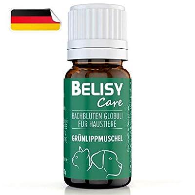 BELISY >Grünlippmuschel< Bachblüten Globuli für Hunde & Katzen - Gelenk Aktiv - Spezial Bachblütenmischung - alkoholfrei - 10 g