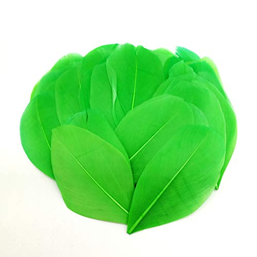 100pcs 2-3 Inches Small Green Goose Feathers for Crafts DIY Jewelry Wedding Party Decorations