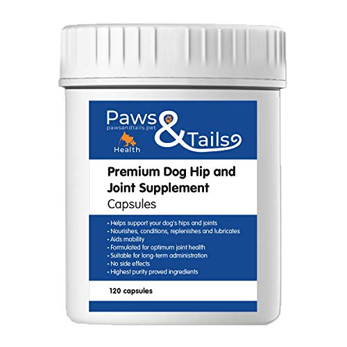 Premium Dog Hip Joint Supplement for dogs - Packed with 10 Key Ingredients - Glucosamine, MSM and Chondroitin to Improve Mobility and Joint Health - Capsules or Powder (120 Capsules)