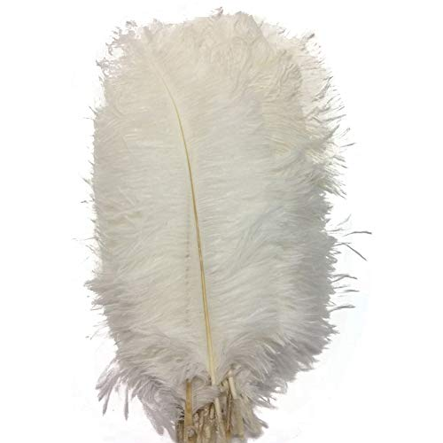 MELADY Pack of 50pcs Natural Ostrich Feathers 12inch for Home Wedding Party Decoration (White)