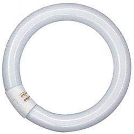 Osram Lumilux T9 C Lampe Fluorescente 22 W 1350 lm G10Q 4000 K