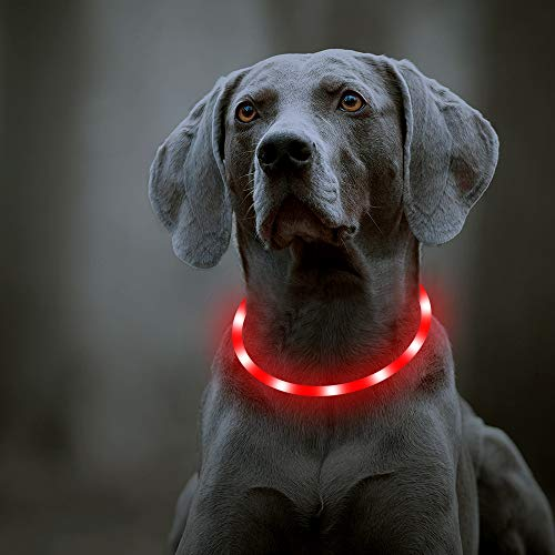 Domi USB Rechargeable LED Dog Collar - Light Up Dog Collars Glow in Dark Pet Dog Collar Keep Your Dogs Be Seen & Be Safe (Red-Silicone)