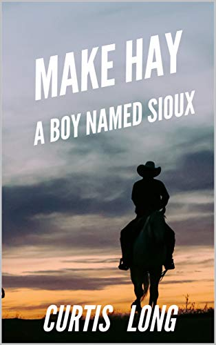 Make Hay: A classic western adventure (The Real McCoy Book 4) (English Edition)