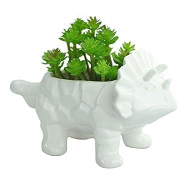 VanEnjoy 6 Inch Cute Cartoon Dinosaur Shape Ceramic Succulent Planter, Water Culture Hydroponics Bonsai Cactus Flower Pot,Air Plant Vase Holder Desktop Decorative Organizer (Triceratops, White)