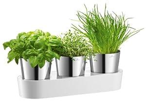 Auerhahn 24 3014 2517 Herbs@Home Set Kräutergarten 3-teilig, Kräuterschere 4-teilig, weiß