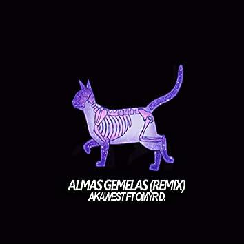 Almas gemelas (Remix)