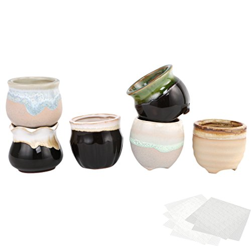 Happy Bonsai Lot de 6 mini pots en céramique pour plantes grasses + 6 grilles