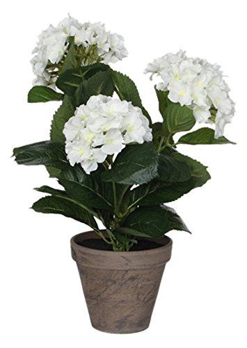 MICA Decorations 949422 Fleurs Hortensia Blanc
