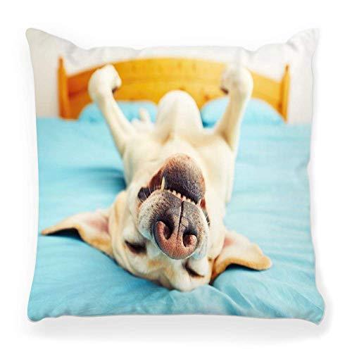 Funda de Cojine Funda de almohada decorativa para perro acostado en la cama trasera mascota feliz divertido animal sueño perezoso labrador soñoliento ronquido cansado descanso hogar45X45CM