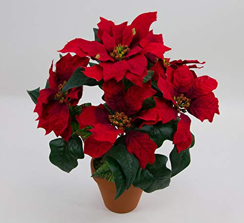Weihnachtsstern im Topf 36cm rot PF künstliche Poinsettie Blume Pflanze Kunstblumen Kunstblumen