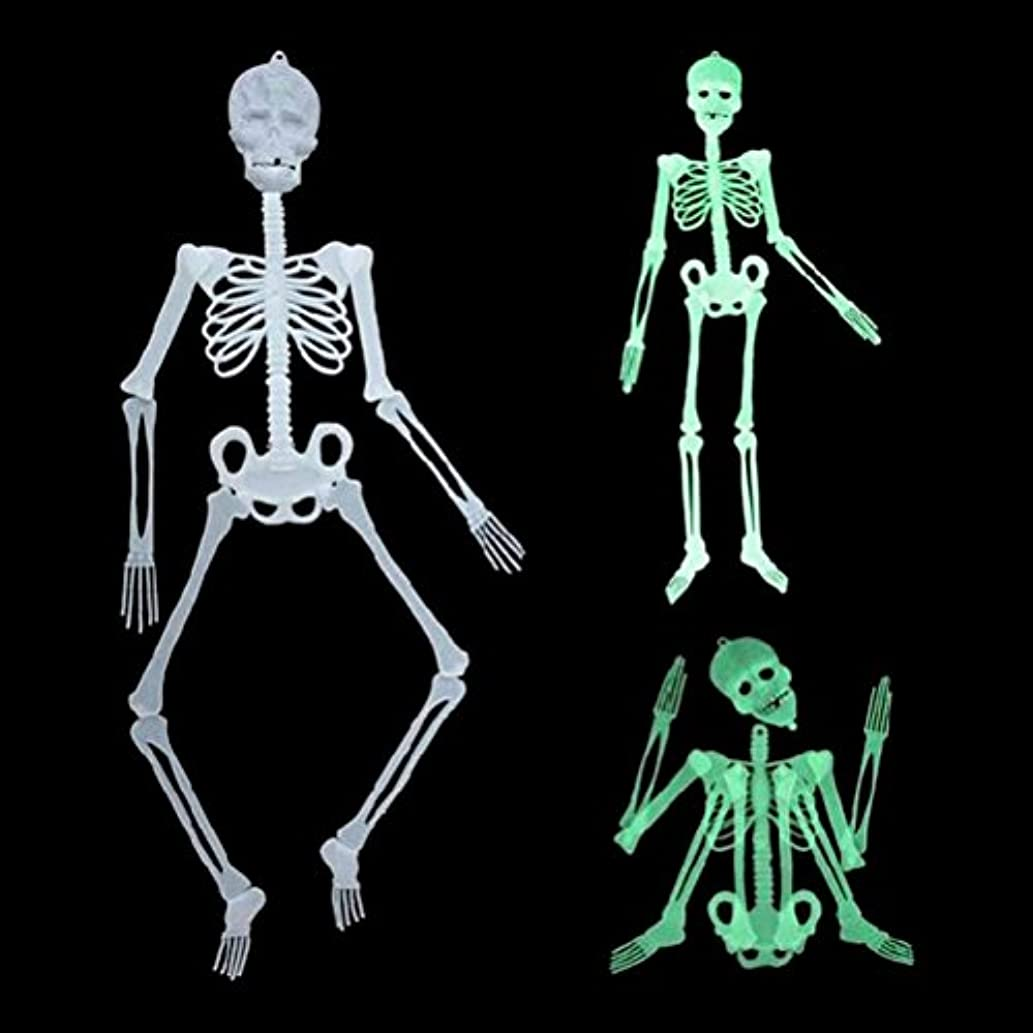 Glow Skeleton - 1pcs Halloween Party Scary Skull Decor Luminous Glow In The Dark Human Skeleton Hanging Decoration - Glitter Tablecloth Glou Favors Collar Gloves Dots Keyboards Easter Bedro
