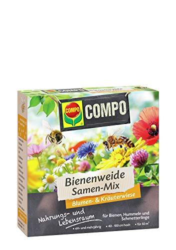 Compo Bienenweide Samen-Mix, Blumen- und Kräuterwiese, Für Bienen, Hummeln und Schmetterlinge, 300 g, 50 m²