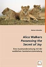 Alice Walkers Possessing the Secret of Joy: Eine Auseinandersetzung mit der weiblichen Genitalverstümmelung (German Edition)