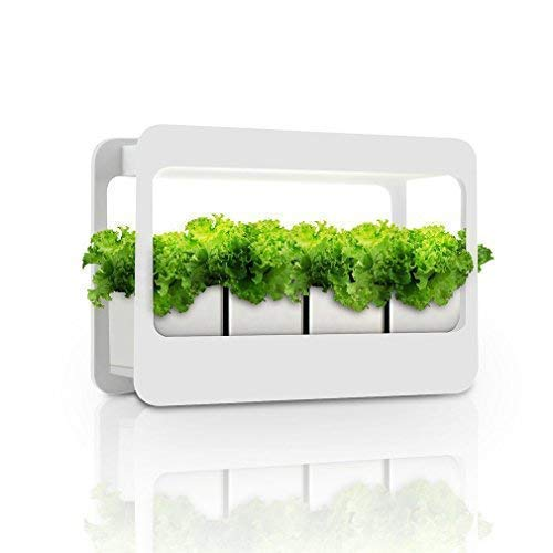 See the TOP 10 Best<br>Kitchen Herb Garden With Light
