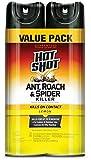 Best Spider Killers - Hot Shot HG-26782 Ant, Roach & Spider Killer Review