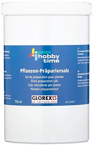 Glorex Pflanzen-Präpariersalz 750 ml, Verschiedenes, Mehrfarbig, 4 x 10 x 17 cm