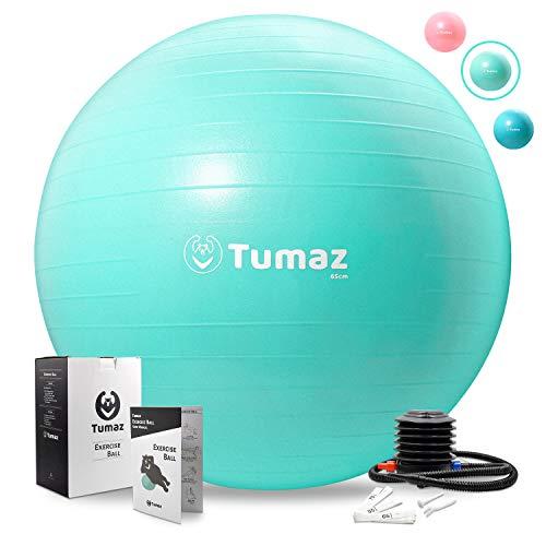 Tumaz Balones de Ejercicio [Anti-explosión/Extra Grueso/Trabajo Pesado] con Bomba rápida Ideal para Silla con balón Pelota de Nacimiento Bola de Equilibrio Pilates, Yoga