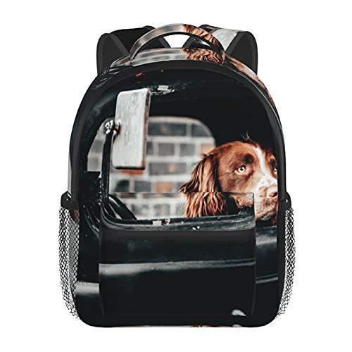 RTUBNSD Kinderrucksack Hund im Auto, Kindergarten Vorschul Tasche Schultasche für Kleinkinder Mädchen Jungen