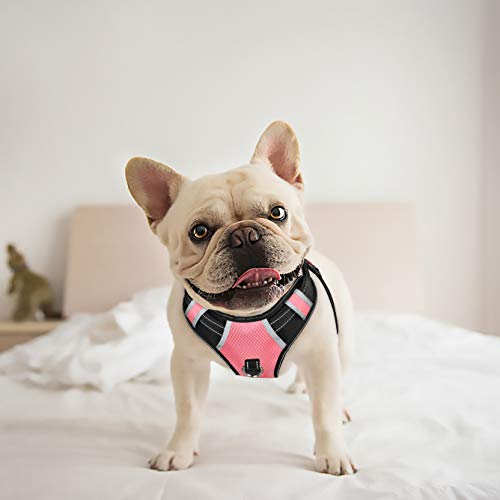 BABYLTRL Small Pink Dog Harness No Pull Adjustable Pet Reflective Oxford Soft Vest