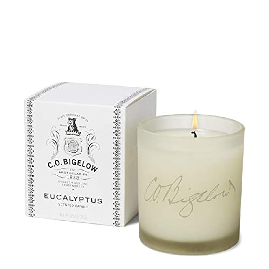 勤勉独特の滅びる[C.O. Bigelow] C.O.ビゲローユーカリの香りのキャンドル - C.O. Bigelow Eucalyptus Scented Candle [並行輸入品]