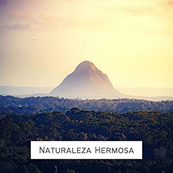 Naturaleza Hermosa: Sonidos Naturales 100% Reales, Alivio de la Migraña, Estrés y Ansiedad