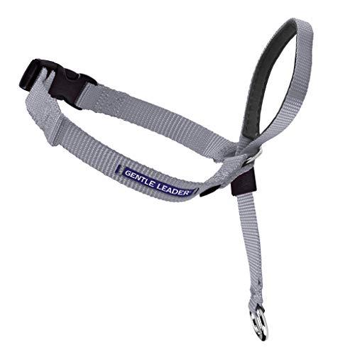 PetSafe Gentle Leader Head Collar with Training DVD, MEDIUM 25-60 LBS., SILVER