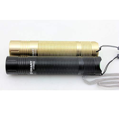H.L Linterna UV, luz Negra, Detector de luz Ultravioleta, para orina de Perro, Manchas de Mascotas y chinches de Cama (sin batería), Negro y Dorado (2 Piezas)