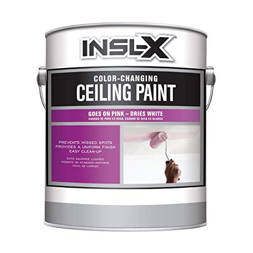 INSL-X PC120009A-01 Color-Changing Ceiling Paint, White
