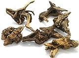 天然 マングローブ 流木 3個セット R(サイズ 約15~20cm位)