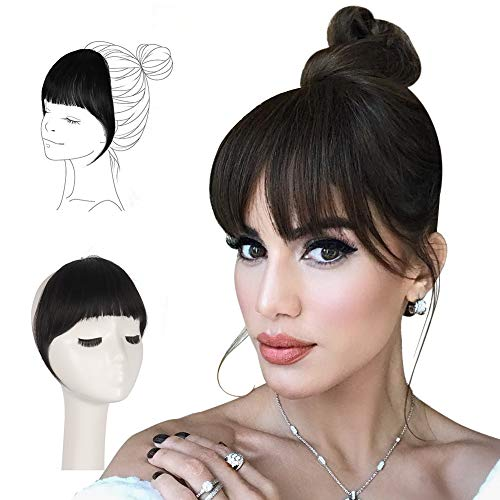 FESHFEN Clip in Bangs 100% Remy Echthaar One Piece Clip in Pony Fringe Bang Extension Verlängerung natürliche Haarteil für Frauen und Mädchen, 12g
