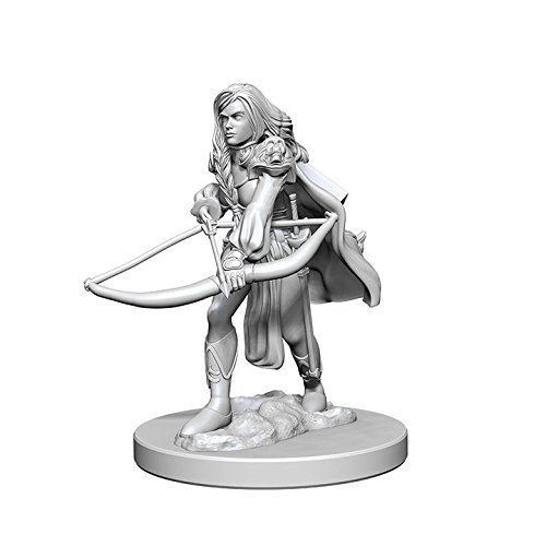Pathfinder: Deep Cuts Unpainted Miniatures: Human Female Fighter