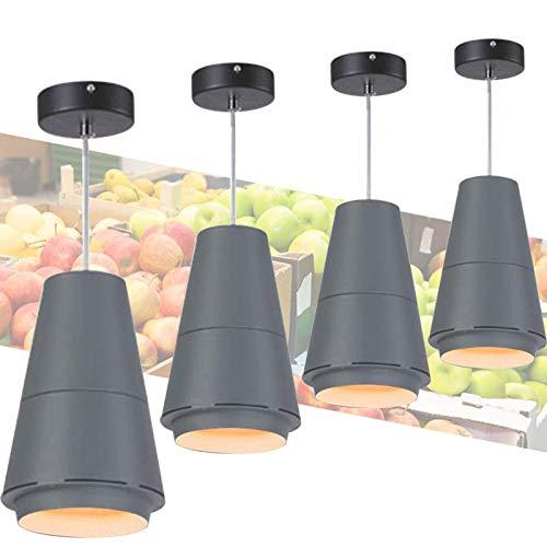 YXB Lampe LED pour Pain, Fruits ...
