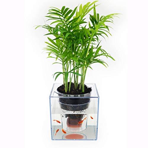 Blumentopf Intelligenter Kreativer Bewässerungs-transparenter Plastikbetriebsblumentopf, Tischplattenbetriebs-Topfblumen-Topf Zimmerpflanze Blumentopf ( Color : Transparent color , Size : 15x15x15cm )