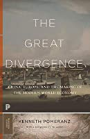 The Great Divergence: China, Europe, and the Making of the Modern World Economy (Princeton Classics)