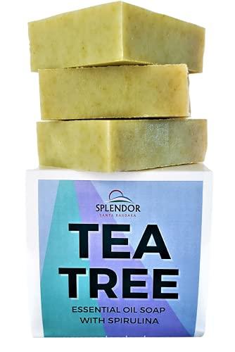 Splendor Tea Tree Coconut Oil Soap Bars with ORGANIC SPIRULINA. Handmade, Vegan, Natural, Moisturizing. Acne, Eczema, Jock Itch and Body Odor for Hand, Body and Face