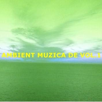 Ambient Muzica De Vol.1