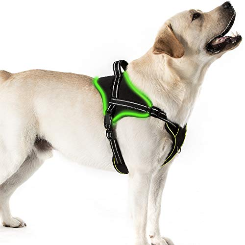 Golener Led Dog Harness No Pull, Reflective Puppy Harness, Adjustable Dog Vest Harness with 2 Leash Clips, Breathable Oxford Stylish Pet Harnesses with Easy Control Handle for Small Dogs(Black,S)
