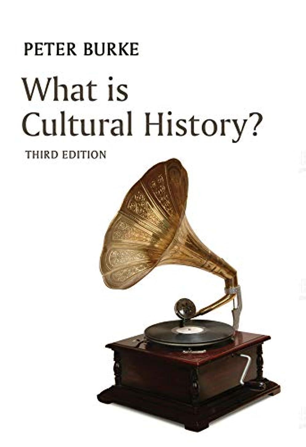 またね伝統修理工What is Cultural History? (What is History?) (English Edition)
